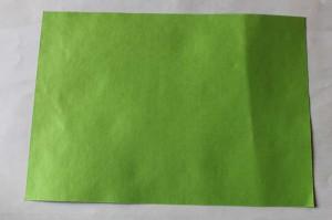 origami grenouille 01